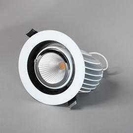 Светильник встраиваемый поворотный S2435WH LED