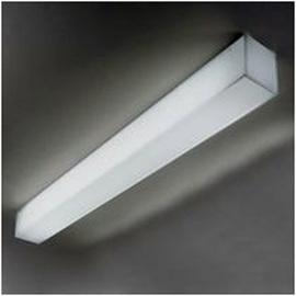 Светильник настенно-потолочный 4883