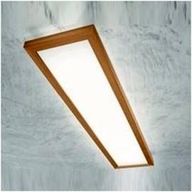 Светильник настенно-потолочный 71916