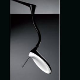 Светильник потолочный FW1-50B