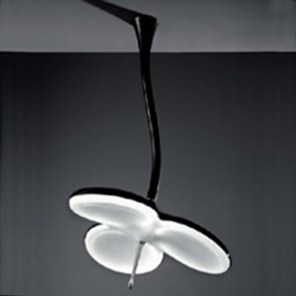 Светильник потолочный FW3-100B